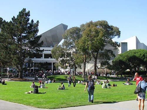 san-francisco-state-university-msw-program