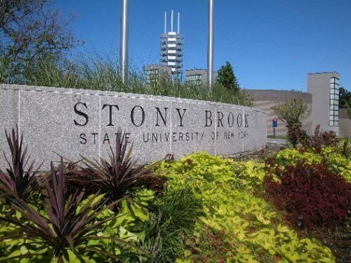 stony-brook-university-suny-bachelor-of-science-in-social-work-bssw