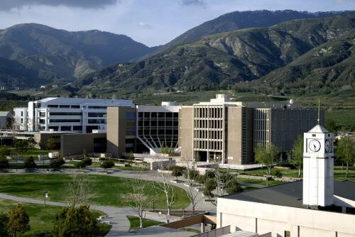 California State University San Bernardino Online MSW Program