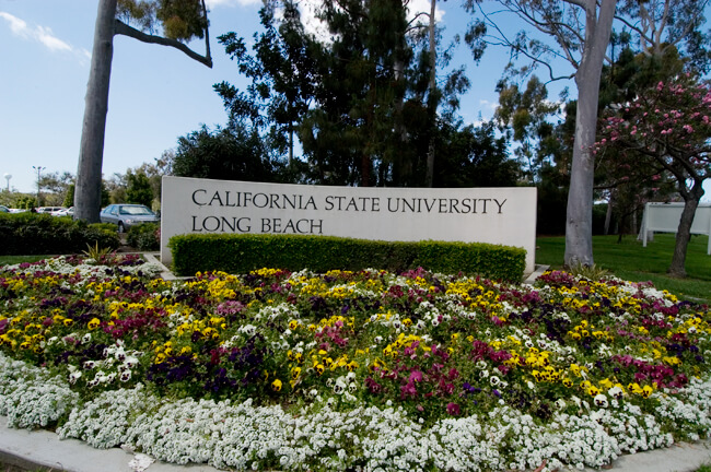 California State University Long Beach Selective Social Work Schools