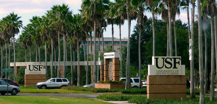 university-of-south-florida